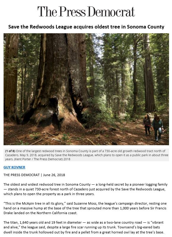 The Press Democrat highlights Save the Redwoods League's new old-growth forest, Richardson Reserve