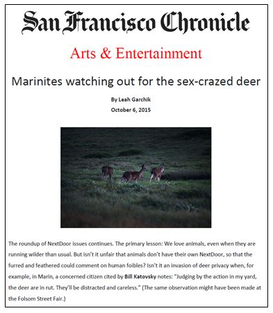 MoAD SF Chronicle