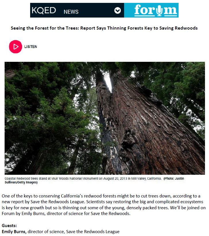 Coverage with KQED Forum for Save the Redwoods League