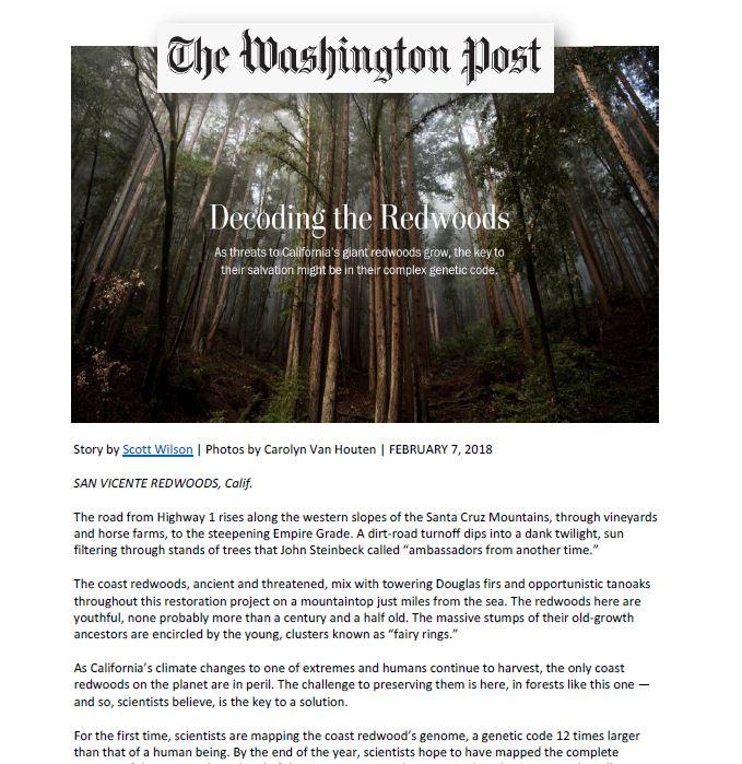 Decoding the Redwoods