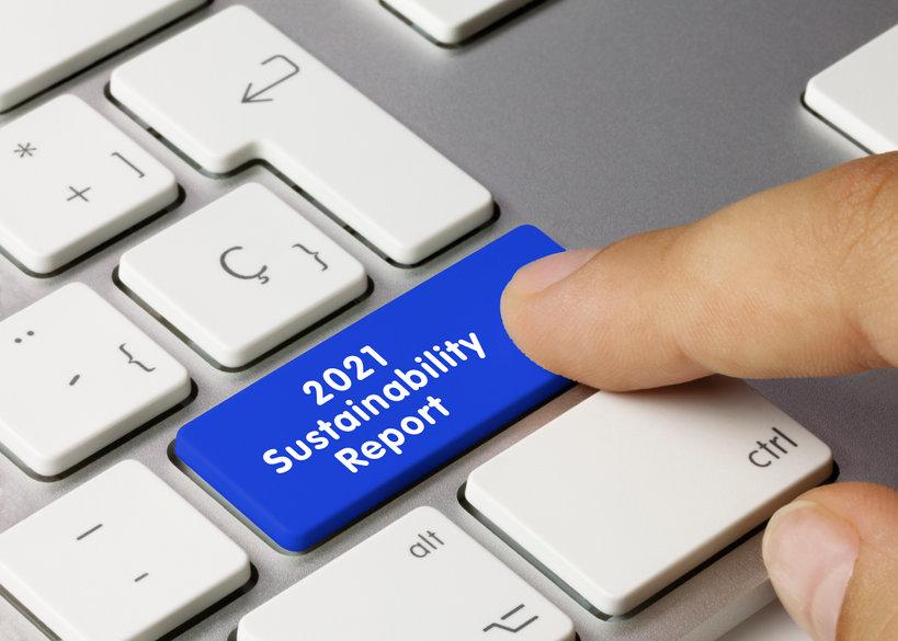 Sustainability Report - Inscription on Blue Keyboard Key